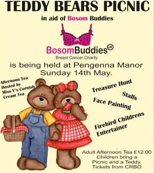 <B><I>Teddy Bears' Picnic</I></B>